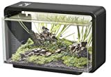 SF LED Aquarienset Home 25 schwarz