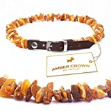 AMBER CROWN Bernsteinkette für Hunde und Katzen mit Lederschließe aus Roh Baltischer Bernstein gegen Zecken und Flöhe
