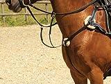 Windsor Vorderzeug, Leder, 5-Punkt, für Großpferde / Cobs, Havana Brown Braun Havana Brown Volle Größe