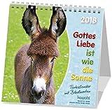 Gottes Liebe ist wie die Sonne 2018: Jubiläums-Postkarten-Kalender für Kinder mit Gedichten und Gebeten