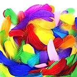 Coceca 500 Stück Bunte Federn, Mehrfarbig Gans Federn zum Basteln - Idee für Masken, Kostüme, Hüte, Zuhause,Deko