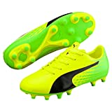 Puma Unisex-Kinder Evospeed 17.5 FG Jr Fußballschuhe, Gelb (Safety Yellow Black-Green Gecko 01), 38 EU