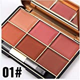 BrilliantDay Professionelle 6 Farben Gesicht Puder Rouge Blush Palette Make Up Kosmetik Set#1