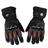 Bonnoeuvre Professionelle Motorradhandschuhe Wasserdichte Regen Touring Motorrad Handschuhe Touchscreen Winter Skihandschuh (L, Schwarz)