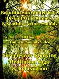 Beautiful sun glinted lake distant wind chimes and soothing nature sounds 10 hour ambient sounds video screensaver studying relaxation meditation yoga [OV]