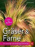 Gräser und Farne: Für sonnige und schattige Standorte
