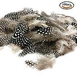 JPSOR 100 Stück 2''-6'' Natürliche gefleckte indianer Feder zum basteln für DIY Kunstwerk, kostüm kinder Schmucken und Bekleidung Dekoration