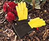 WAGNER Gold Leaf Gloves 'TOUGH TOUCH' Damen - Gartenhandschuhe / Rosenhandschuhe der Extraklasse, Hirschleder und Rindsleder / stachelresistent - 25305100