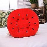 CPFYZH Verdicktes Stanzsitzkissen Studentenkissen Bürostuhlkissen Anti-Rutsch-Sitzkissen Einfaches Kissen-Wassermelone Rot_45Cm0.3Kg