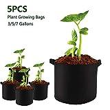 H.Y.FFYH Pflanze wachsen Taschen Filz Pflanzenbau Taschen Gemüse Blume Kartoffel-Topf Container Garten Pflanzkorb Sämling wächst Pot (Color : Schwarz, Size : 3 Gallo)