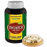 VITA IDEAL ® Ingwer (zingiber officinale) 360 Kapseln je 500mg, aus rein natürlichen Kräutern, ohne Zusatzstoffe