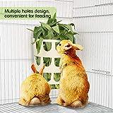 Furpaw Heuraufe für Kaninchen, Kleintier Näpfe Heuraufe Futtertower für Heu Karotten Futterraufe, Heuraufe Fütterung in Kunststoff für Parrot (Khaki)