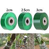 2cm Topfen Band Graft Membrane Garden Bind Riemenbreite Professionelle Umweltfreundlich Biologisch Abbaubar