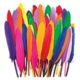 Baker Ross Farbenfrohe Mini-Federn für Kinder – zum Basteln von Collagen und Modellen sowie Hüten und Kostümen zu Karneval (80 Stück)