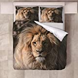 XLLJA Kissenbezug Bettwäscheset,3D Wolf Tiger Bettbezug Set Single Double King Size Print Bettbezug Bettwäsche Set Kinder Schlafzimmer-Lion_172cm × 218cm (2pcs)