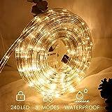 Hengda LED Lichterschlauch für außen 10m warmweiß 240 LEDs Lichterschlauch Wasserfest Lichterkette Strombetrieben mit 8 Modi für Party Hochzeit Deko Warmweiß Leuchtschlauch