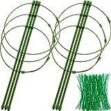 Boao 2 Sätze Verstellbare Pflanzen Unterstützung Käfige Garten Pflanze Tomaten Stütz Ringe mit 100 Stücken Twist Krawatten für Kletter Pflanzen