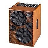Acus One Forstrings 10 AD Akustikgitarre Verstärker