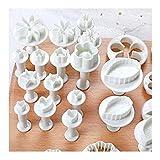 longyisound Fondant Ausstecher Set DIY 33tlg, Ausstecher Stempel Ausstechform Modellierwerkzeug, Ausstechformen Blumen, Schmetterling, Sterne,Herzförmig, Blätter zum Torten, Kuchen Backen