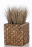 Casa Mina 6001610P1 Wasserhyazinthe Blumenkübel Übertöpfe Pflanzkübel Blumentopf Java CWB braun 45cm hoch
