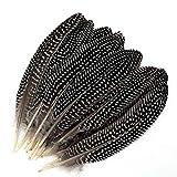 Mwoot 20 stück Natur Dekoration fasan Federn, 15-20 cm läng, Gepunktete Federn Ideal für Kostüme, Hüte, basteln, Zuhause Dekor, DIY