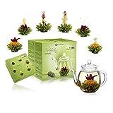Creano Teeblumen Mix - Geschenkset Erblühtee mit Glaskanne Grüner Tee fruchtig aromatisiert (Teerosen in 6 Sorten), Blooming Tea Tee Geschenk Weihnachten