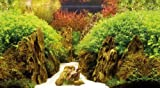 Hobby 31020 Fotorückwand-Zuschnitt Canyon / Woodland
