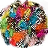 BAKHK 150 Stück 8-15cm Bunte Indianer Feder zum Basteln Federn bunt für DIY Kunstwerk, Dekoration für Karneval Masken, Hüte oder Haarschmucken, 10 Farben