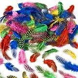 Baker Ross EV1392 Gesprenkelte Federn zum Basteln für Kinder-ideal als Dekoration zum Karnival für Masken und Kostüme-120 Stück