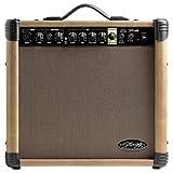 Stagg 25015613 40 AA R EU REVERB Acoustic Gitarre Amplifier (40 Watt)