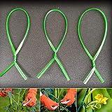 Garten-Spiralbinden, Kunststoff, 200 Stück, nicht null, grün, Free Size