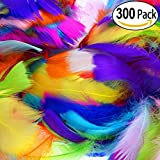 LANTECK 300 stcke 10 farbe Decor Federn, Bunte Naturfedern Federn 8-15 cm fr DIY Handwerk Hochzeit Home Party Dekorationen