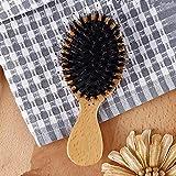 Mini hölzerner Kamm Massagen Natur Eber-Borste-Anti-Statik-Haar Scalp Flachpinsel Buche Griff Hair Styling Bürsten-Werkzeug (Color : 14cm)