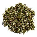 Wakauto Künstliches Moos, künstliches Moos, grüne Flechten, Pflanzen für Gartendekoration, 3 Packungen