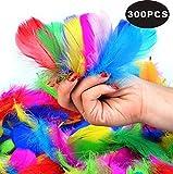 SUNRIZ Bunte Federn,300 Stück Bunte Natürliche Federn Naturfedern für DIY Handwerk Art Design Basteln Karneval Rosen Montag Halloween Fest Versch